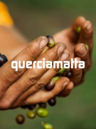 Cover Works Querciamatta - A tutto tondo agency